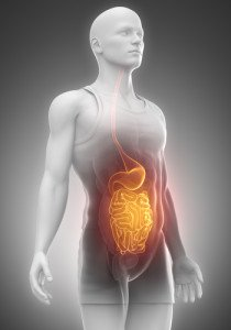 Holes in your gut?