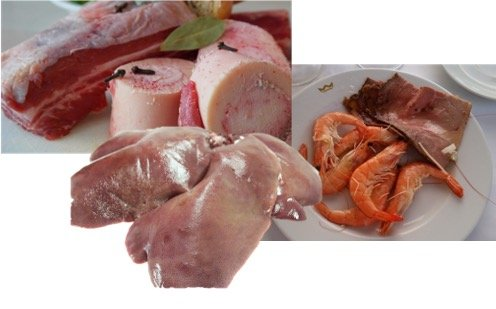 Carnivore Diet Foods